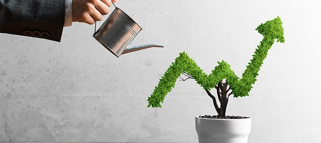 How to growth your business?